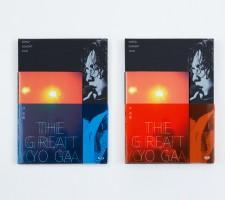 Yoga concert 0493